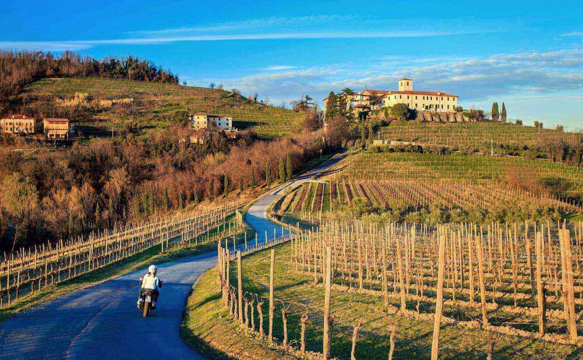 Terre di mineralità, di sapori e di genuinità. Le sue zone vitivinicole, limitate solamente nella su...